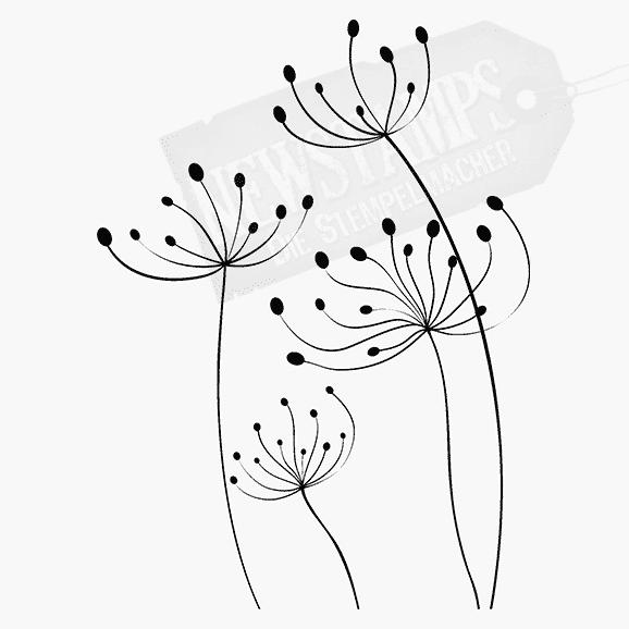 Vier Dandelion fein gezeichnet Motivstempel