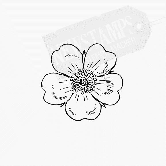 Florales Motiv kleines Blümeli