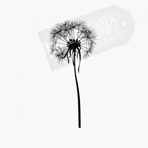 Florales Motiv Pusteblume mittel