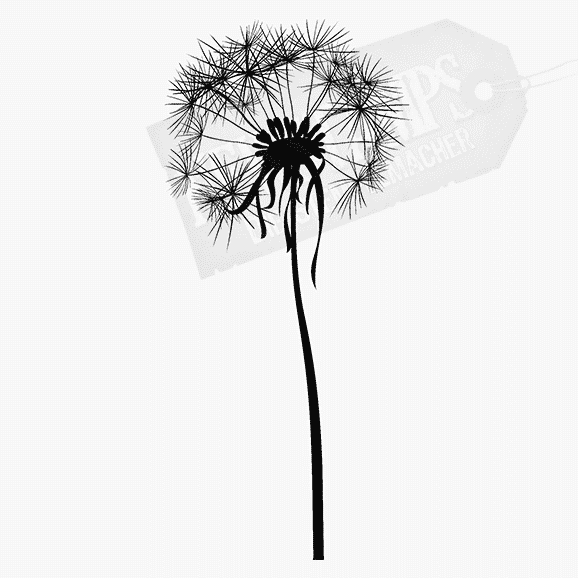 Florales Motiv Pusteblume groß