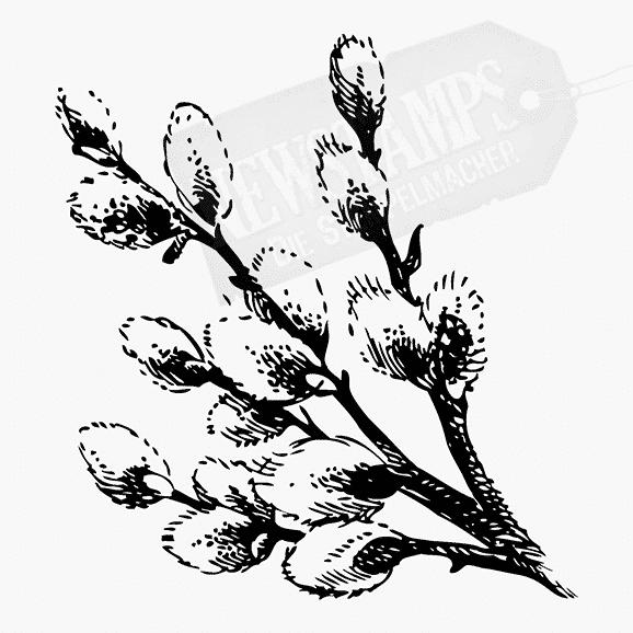 Florales Motiv Weidenkätzchen Zweige