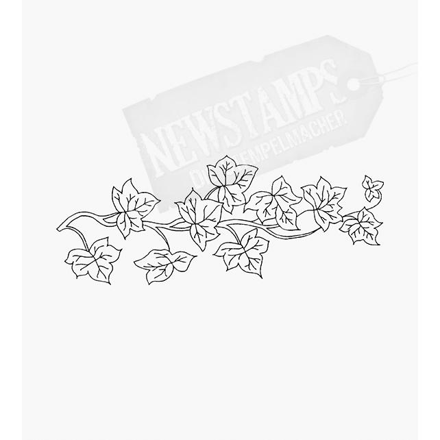 Florales Motiv Efeuranke