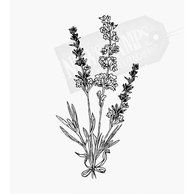 Florales Motiv Lvendel 3 Stiele mit grünem Blättern