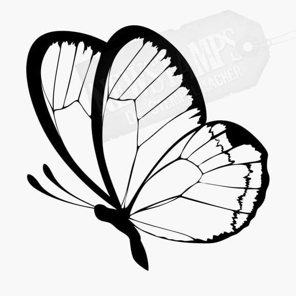 kleiner Schmetterling Kohlweissling Tierstempel