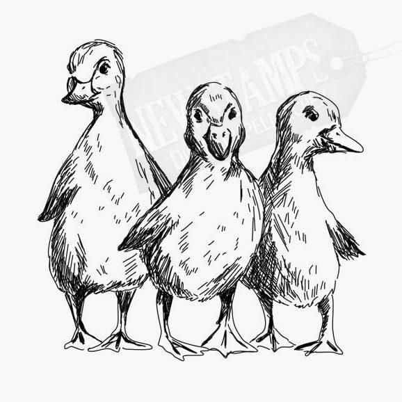 3 Entenbabys nebeneinander Tierstempel