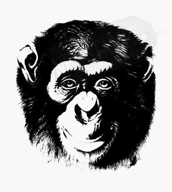 Ein Tier Stempel als Motivstempel mit einem Schimpansen
